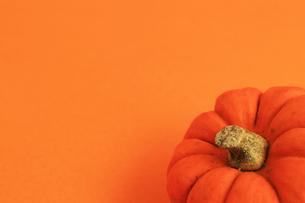 オレンジ色の背景とオレンジ色のカボチャの写真素材 [FYI01213011]