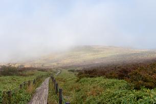 霧が晴れそうな高原の写真素材 [FYI01213476]