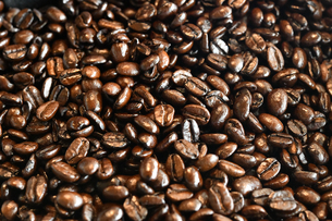 コーヒー豆の写真素材 [FYI01213690]