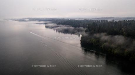 霧の朝の写真素材 [FYI01213828]
