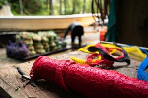 牡蠣の収穫網の写真素材 [FYI01213838]