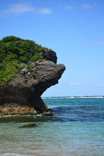 浦添市海岸の岩の写真素材 [FYI01214077]