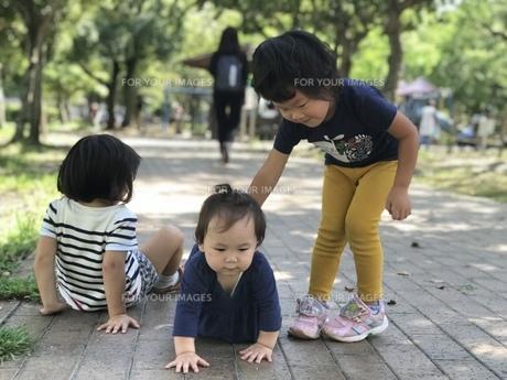 公園の写真素材 [FYI01214244]