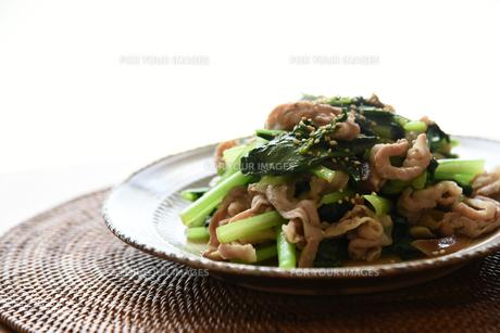 小松菜と豚肉の炒め物の写真素材 [FYI01214770]