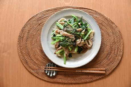 小松菜と豚肉の炒め物の写真素材 [FYI01214772]