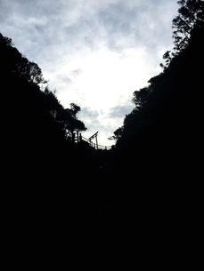 山路の写真素材 [FYI01214854]