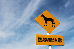 馬の横断を注意する標識の写真素材 [FYI01214893]