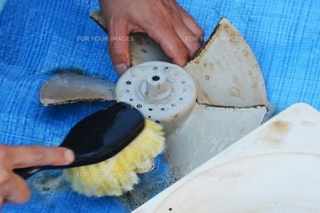 換気扇清掃・ハウスクリーニングの写真素材 [FYI01215055]