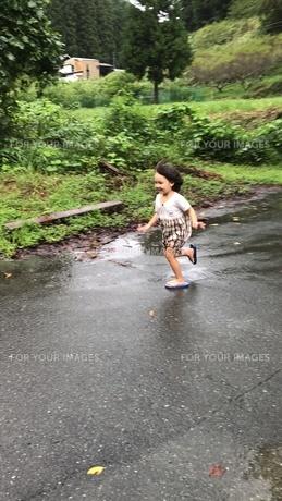 自然と遊ぶの写真素材 [FYI01215082]