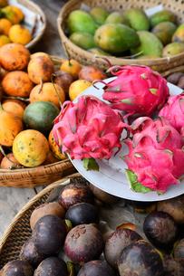 常夏のフルーツの写真素材 [FYI01215133]
