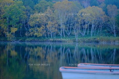 静寂な湖の写真素材 [FYI01215781]