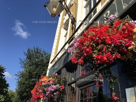 晴れた日のイギリスの写真素材 [FYI01215983]