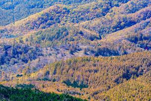 山頂から見る紅葉した山肌の写真素材 [FYI01216071]