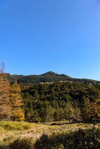 北横岳と紅葉 縦構図の写真素材 [FYI01216080]