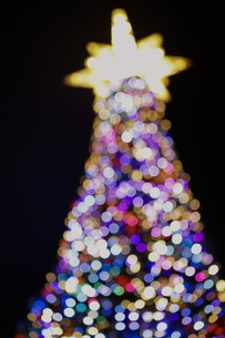クリスマスツリーの写真素材 [FYI01216216]