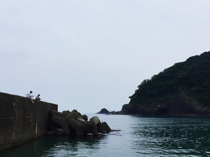 釣りの写真素材 [FYI01216485]