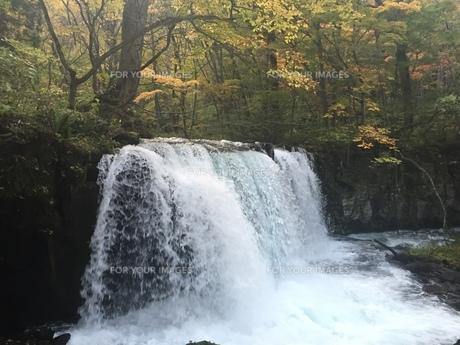 滝の写真素材 [FYI01216494]