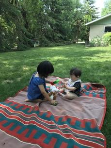 裏庭で遊ぶの写真素材 [FYI01216495]