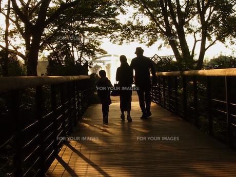 家族の写真素材 [FYI01216502]