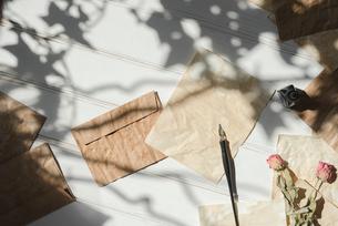 木漏れ日とペンとインクと散りばめた紙と封筒と花の写真素材 [FYI01216577]