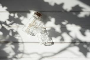 ドライフラワーが入ったガラス瓶と木漏れ日の写真素材 [FYI01216595]