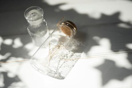ドライフラワーが入ったガラス瓶と小瓶の写真素材 [FYI01216597]