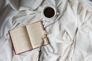 本と花とコーヒーカップの写真素材 [FYI01216614]