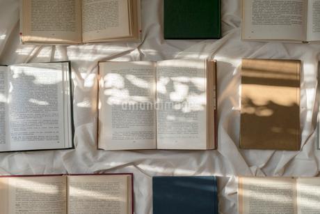 白い布の上に開いて並べた本と、差し込む光の写真素材 [FYI01216626]