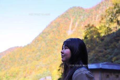 立山黒部アルペンルート紅葉の旅の写真素材 [FYI01216740]