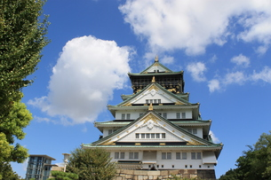 大阪城の写真素材 [FYI01216950]