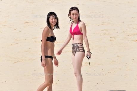 宮古島/夏の風景の写真素材 [FYI01216998]
