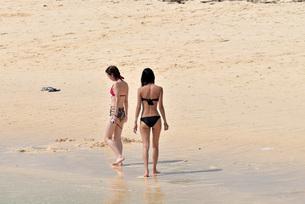 宮古島/夏の風景の写真素材 [FYI01217208]