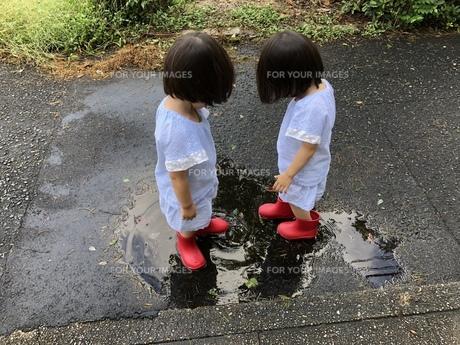 双子の写真素材 [FYI01217287]
