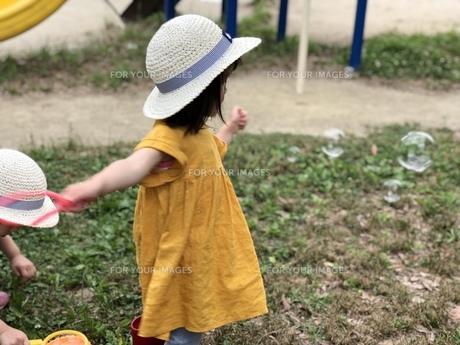 夏の日の写真素材 [FYI01217288]