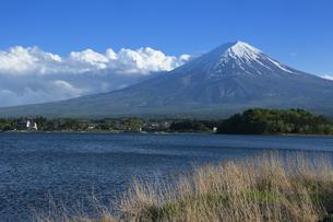 富士山の写真素材 [FYI01217641]