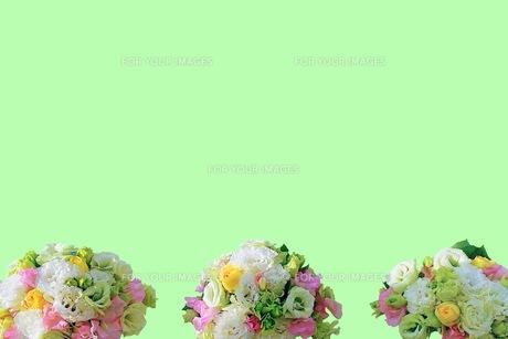花の写真素材 [FYI01217684]