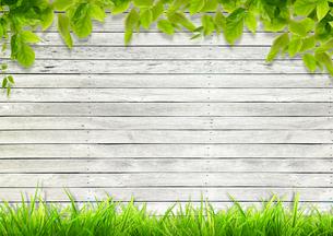 背景素材/ 夏の風景 (ナチュラルイメージ)のイラスト素材 [FYI01217897]