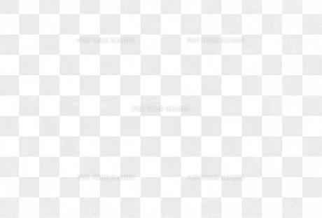 格子柄 和紙 テクスチャ イラストのイラスト素材 [FYI01217984]