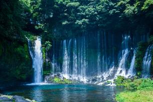 白糸の滝の写真素材 [FYI01218098]