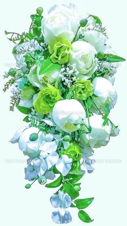 花の写真素材 [FYI01218392]