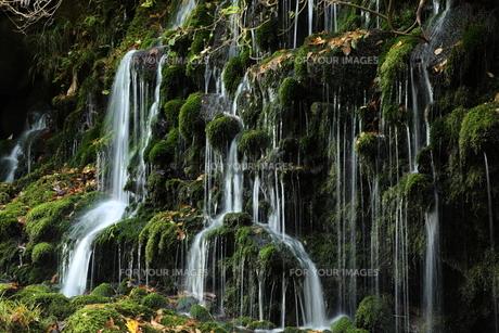 滝の写真素材 [FYI01218531]