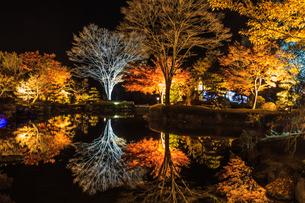 秋の桜山公園の風景の写真素材 [FYI01218837]