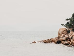 岩の海岸の写真素材 [FYI01218877]