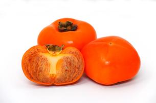 熟した柿の写真素材 [FYI01219027]