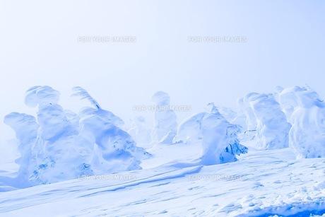 山の写真素材 [FYI01219162]