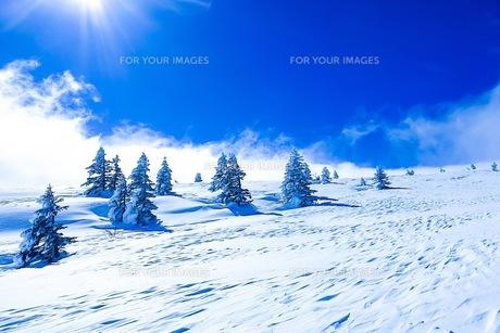 山の写真素材 [FYI01219164]