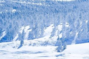 山の写真素材 [FYI01219166]