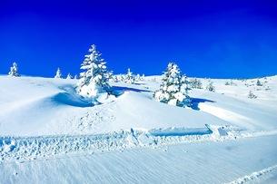 山の写真素材 [FYI01219171]