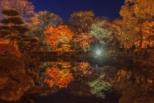 秋の桜山公園の風景の写真素材 [FYI01219410]