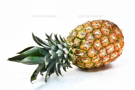 白背景のパイナップルの写真素材 [FYI01219617]